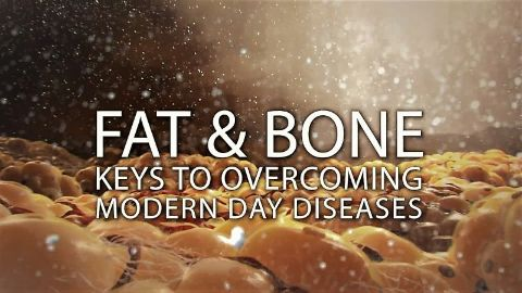 Fat & Bone: Keys to Overcoming Modern Day Diseases