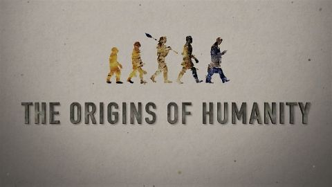 The Origins of Humanity