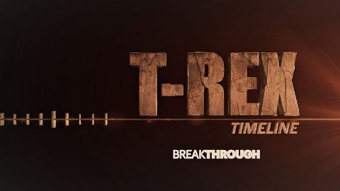 T-Rex Timeline