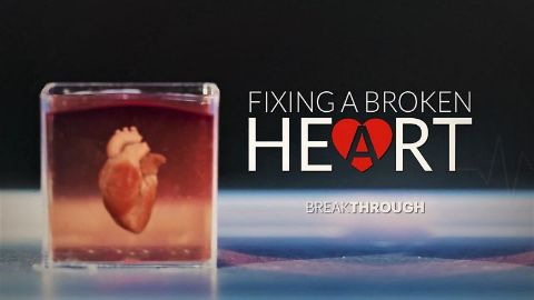 Fixing a Broken Heart