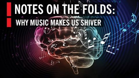 How Music Affects Your Brain Notes on the Folds