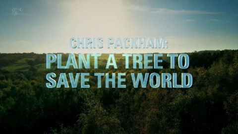 Plant a Tree to Save the World