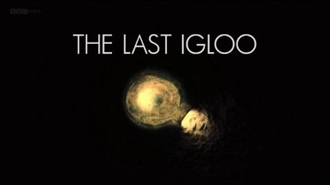 The Last Igloo