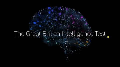 The Great British Intelligence Test