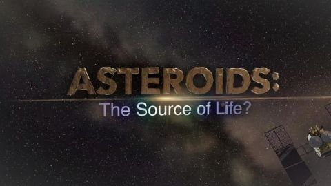 Asteroids: The Source of Life?