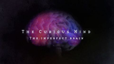 The Imperfect Brain