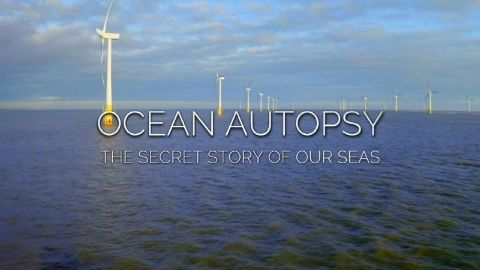 Ocean Autopsy: The Secret Story of Our Seas