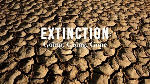 Extinction: Going, Going, Gone