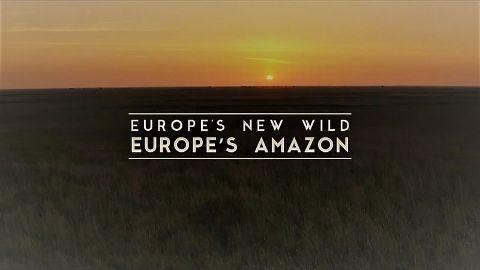 Europe's Amazon