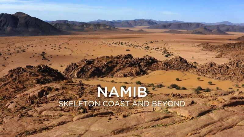 Namib Skeleton Coast and Beyond