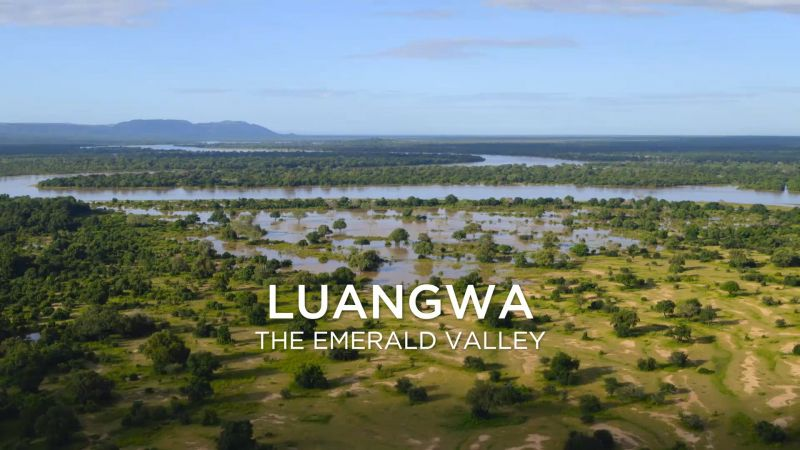 Luangwa the Emerald Valley