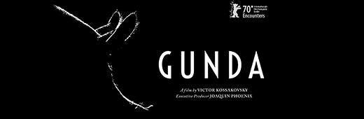 Gunda: Mother, pig