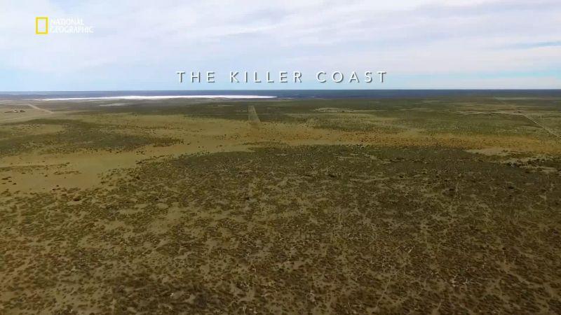 Killer Coast