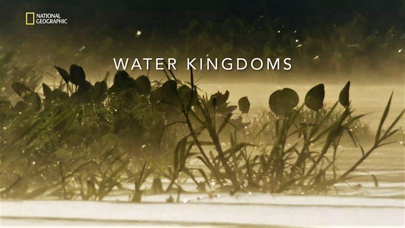 Water Kingdoms
