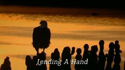 Lending A Hand