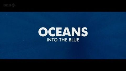Oceans - Into the Blue