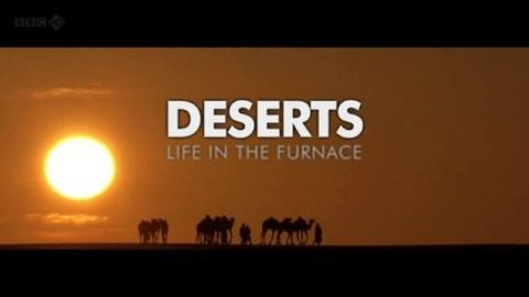 Deserts - Life in the Furnace