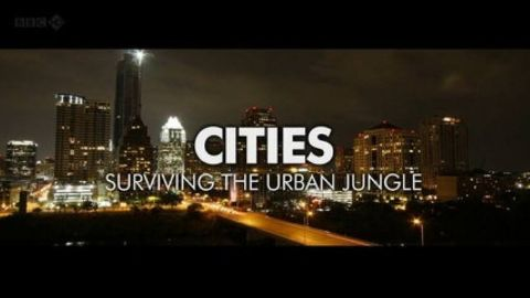 Cities - Surviving the Urban Jungle