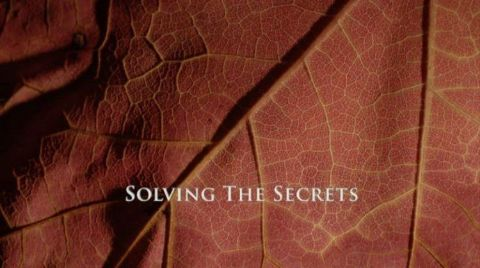 Solving the Secrets