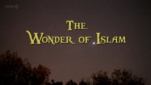 The Wonder of Islam