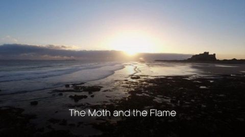 The Moth and the Flame