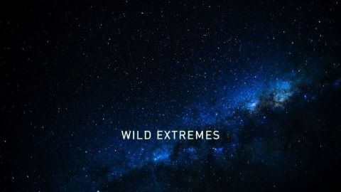 Wild Extremes