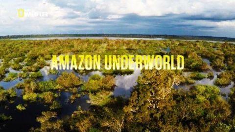 Amazon Underworld