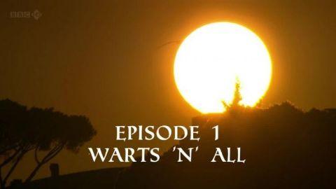 Warts 'n' All