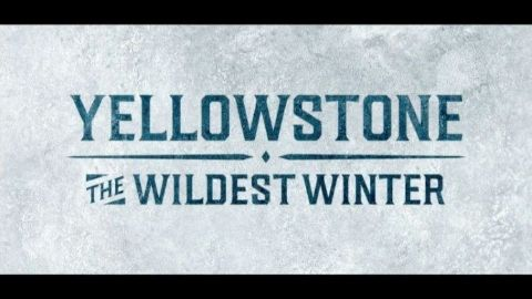 Wildest Winter