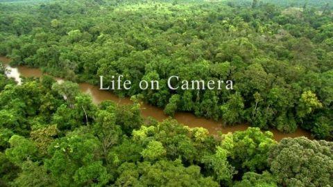Life on Camera