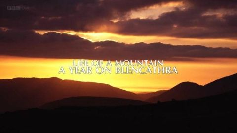 Life of a Mountain: A Year on Blencathra