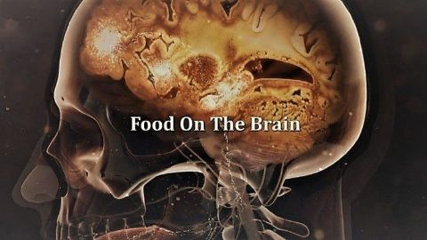 Food On The Brain
