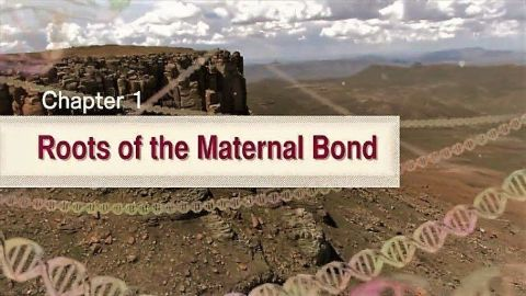 Roots of the Maternal Bond