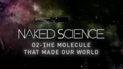 O2: The Molecule that Made Our World