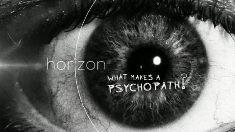 What Makes a Psychopath