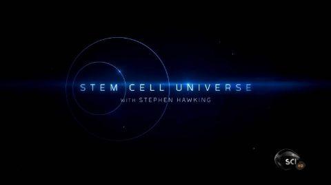 Stem Cell Universe