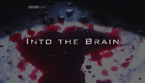 Into the Brain