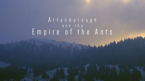 Attenborough and the Empire of the Ants