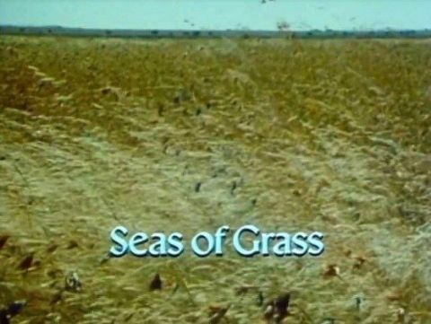 Seas of Grass