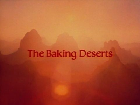 The Baking Deserts