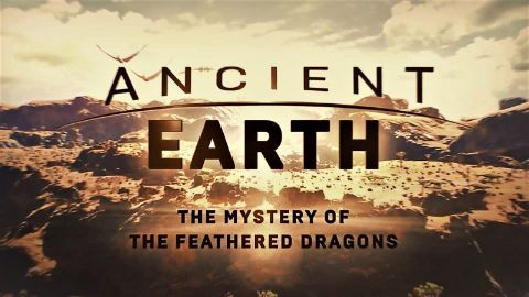 The Mystery of the Feathered Dragons