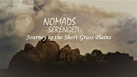 Journey to the Short Grass Plains