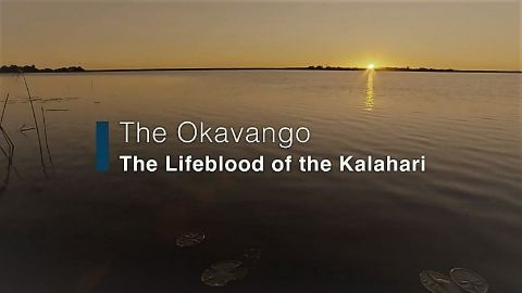The Okavango: Lifeblood of the Kalahari