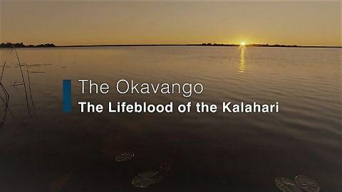 The Okavango: Lifeblood of the Kalahari