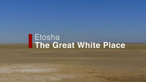 Etosha: the Great White Place