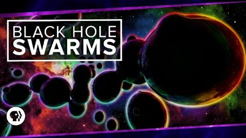 Black Hole Swarms