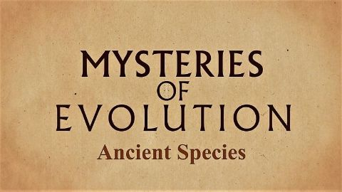 Ancient Species
