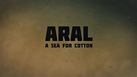 Aral a Sea for Cotton
