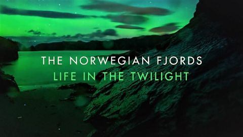 The Norwegian Fjords: Life in the Twilight