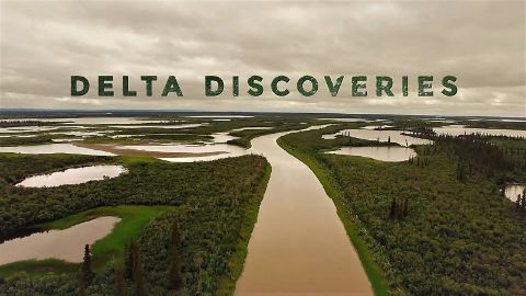 Delta Discoveries